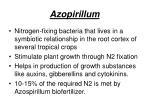 azopirillum