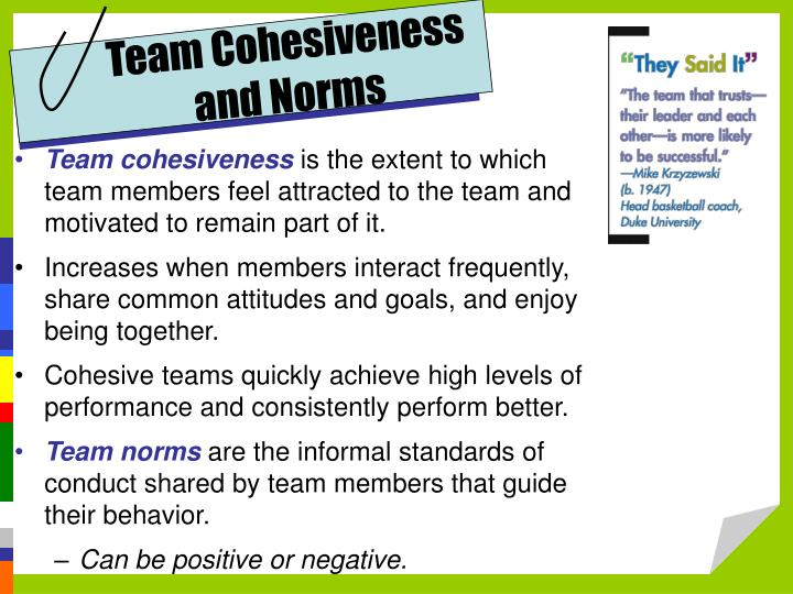 Team Cohesiveness and Norms