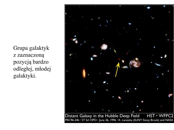 Grupa galaktyk
