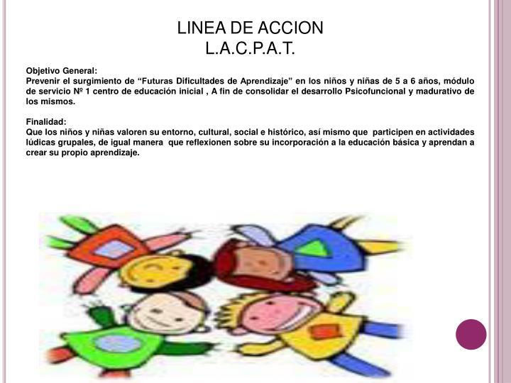 LINEA DE ACCION