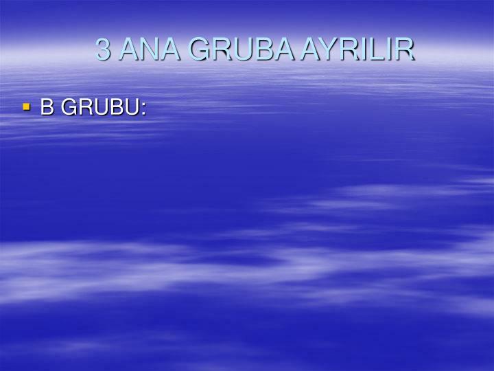 3 ANA GRUBA AYRILIR