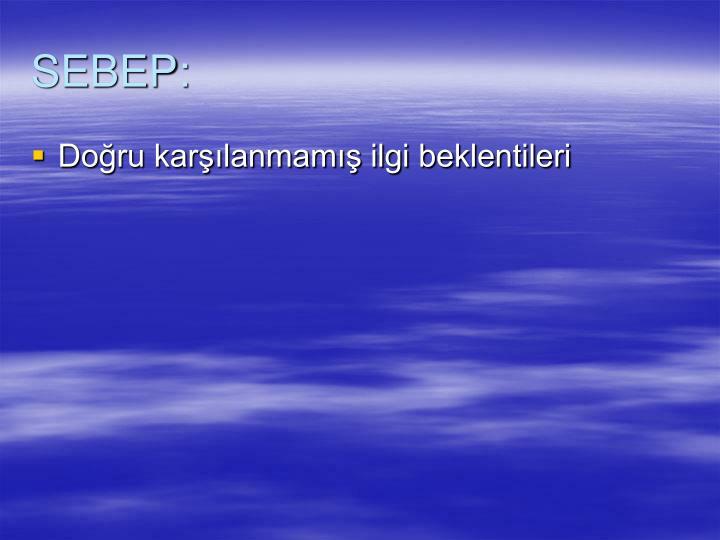 SEBEP: