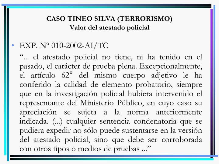 CASO TINEO SILVA (TERRORISMO)