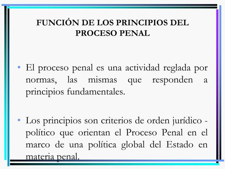 FUNCIÓN DE LOS PRINCIPIOS DEL PROCESO PENAL