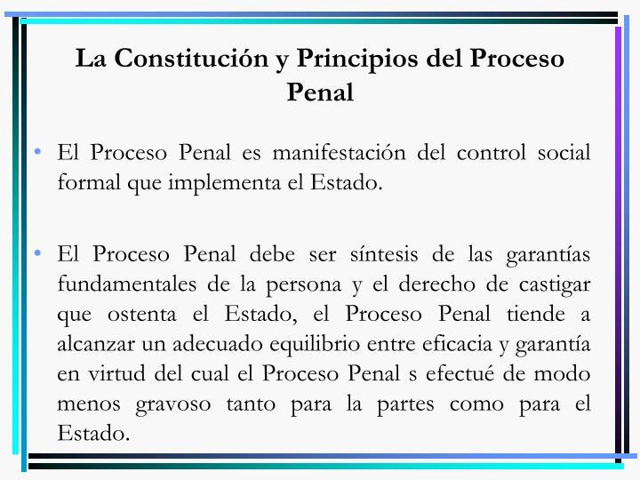 La Constitución y Principios del Proceso Penal