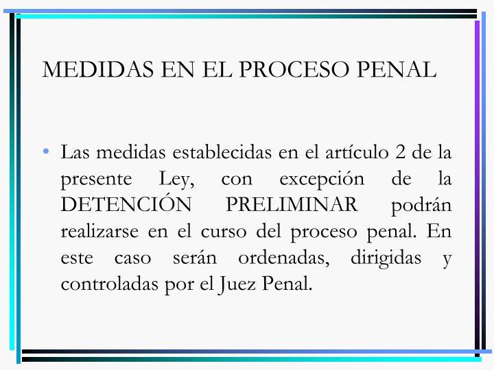 MEDIDAS EN EL PROCESO PENAL