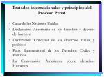 tratados internacionales y principios del proceso penal