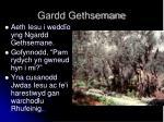 gardd gethsemane