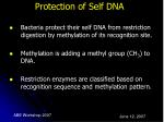 protection of self dna