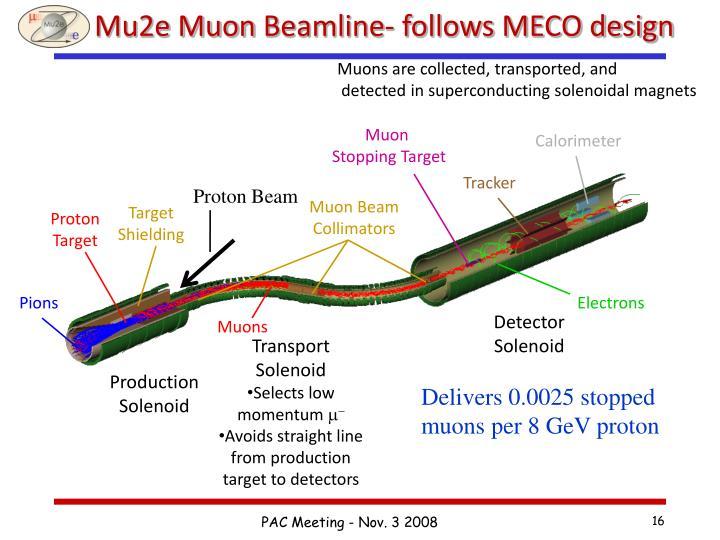 Mu2e Muon