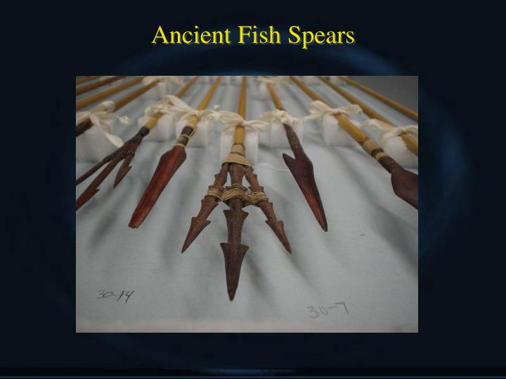 Ancient Fish Spears