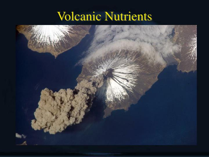 Volcanic Nutrients