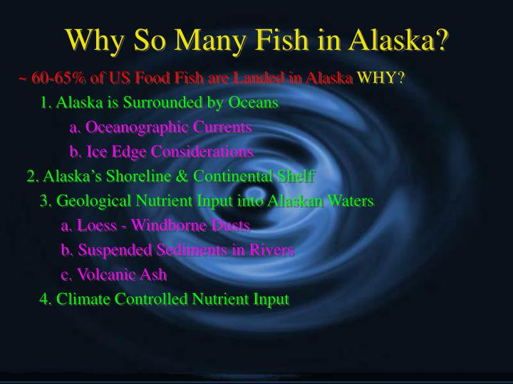 Why so many fish in alaska