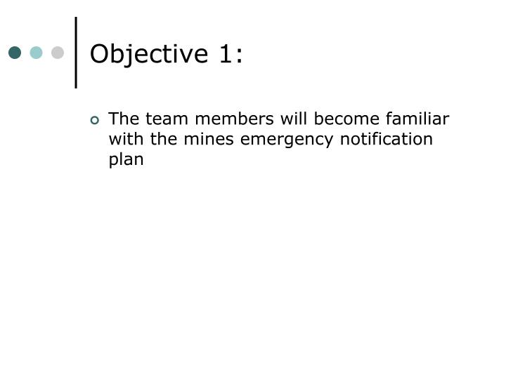 Objective 1: