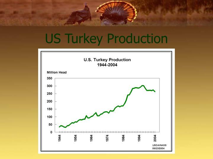 US Turkey Production