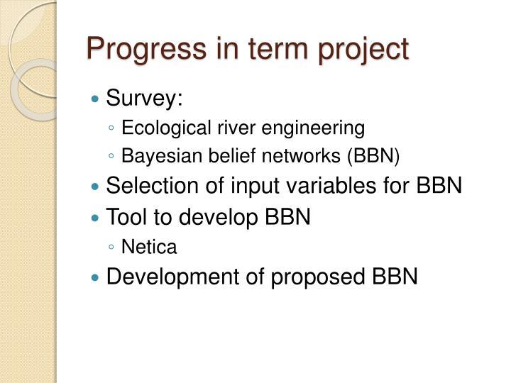 Progress in term project