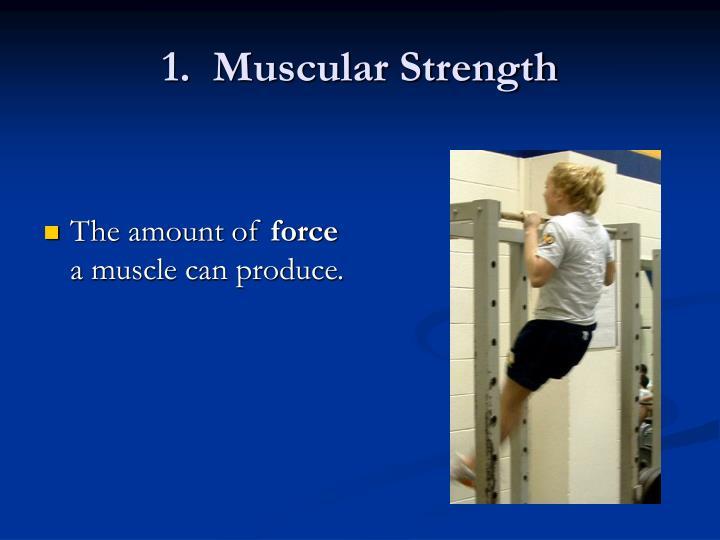 1.  Muscular Strength