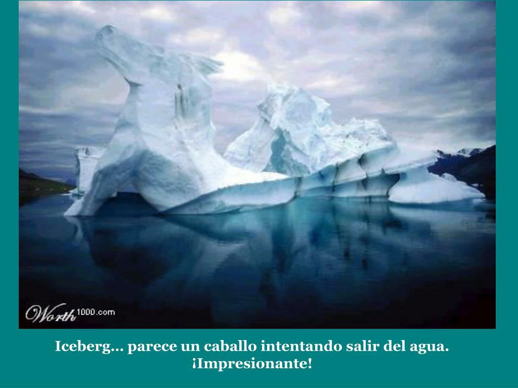 Iceberg… parece un caballo intentando salir del agua. ¡Impresionante!