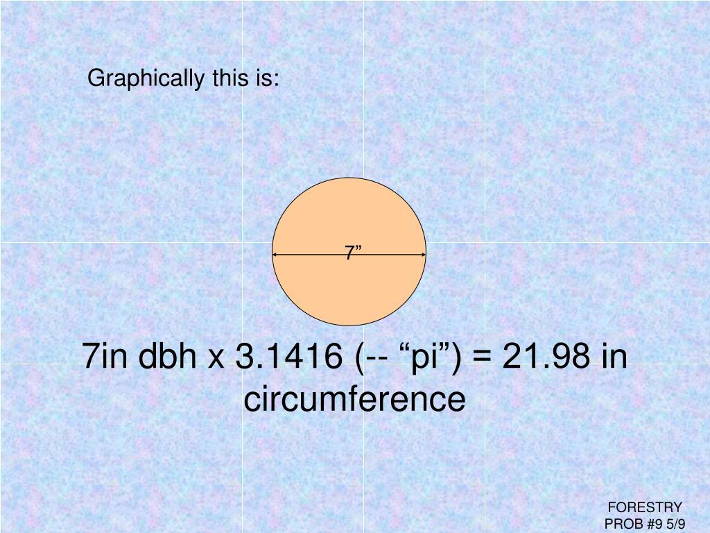 """7in dbh x 3.1416 (-- """"pi"""") = 21.98 in"""