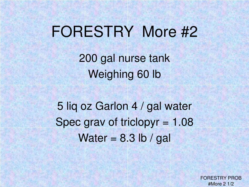 FORESTRY  More #2