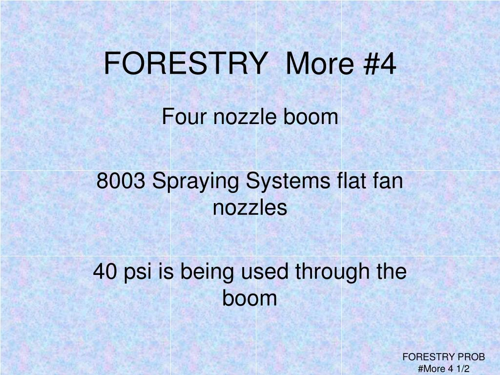FORESTRY  More #4