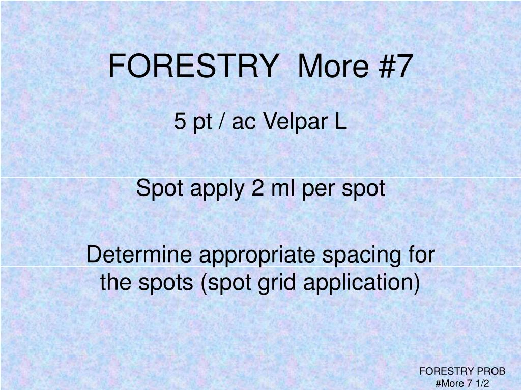 FORESTRY  More #7