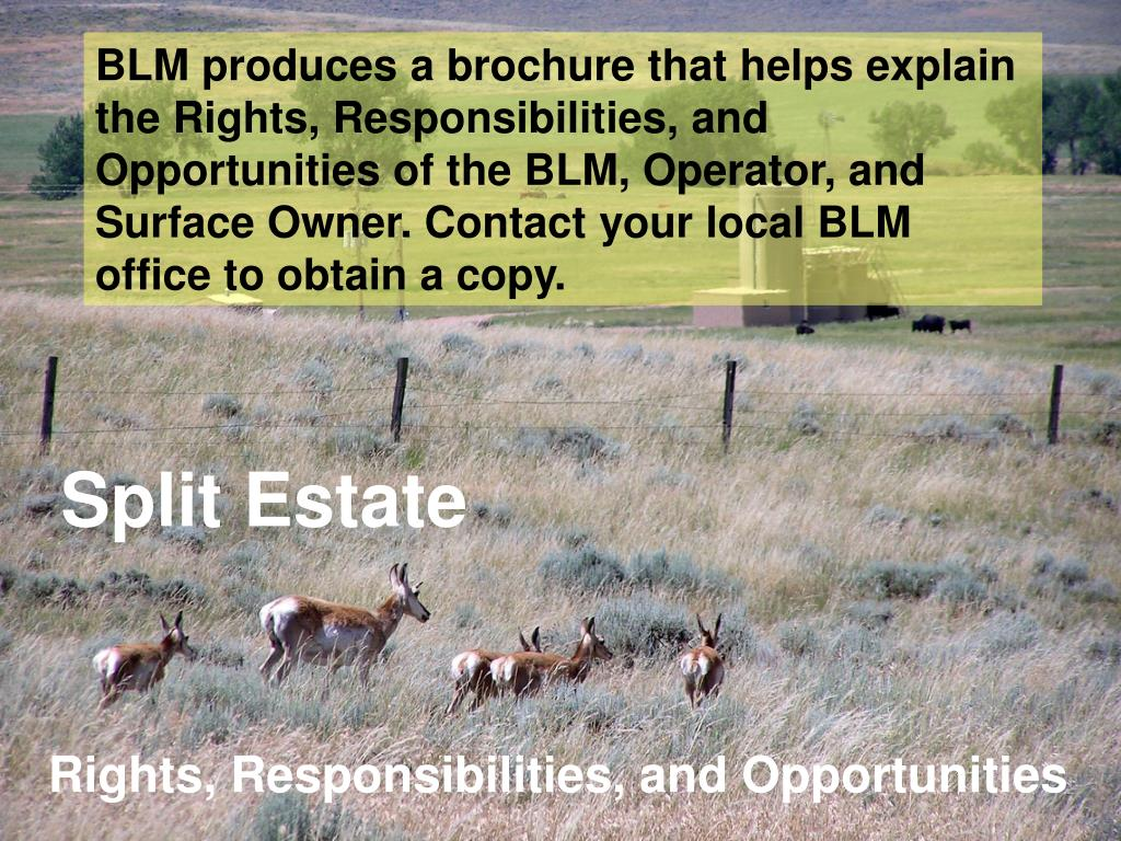 BLM produces a brochure that helps explain the Rights, Responsibilities, and Opportunities of the BLM, Operator, and Surface Owner. Contact your local BLM office to obtain a copy.