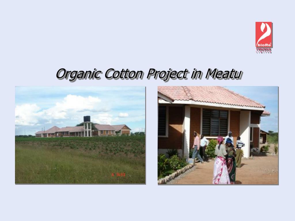 Organic Cotton Project in Meatu