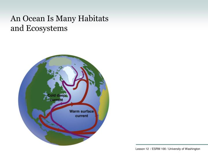 An Ocean Is Many Habitats