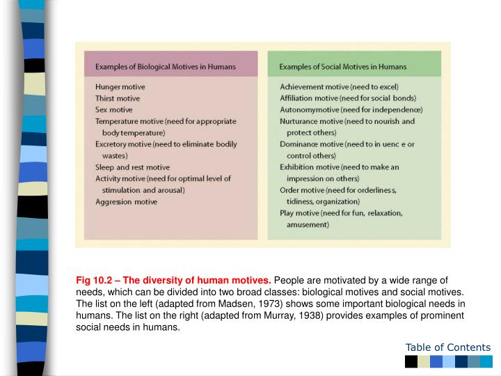Fig 10.2 – The diversity of human motives.