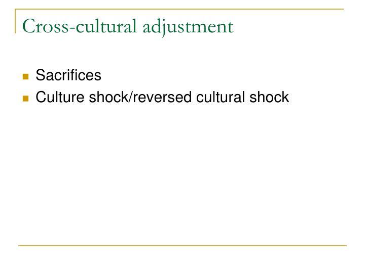 Cross-cultural adjustment