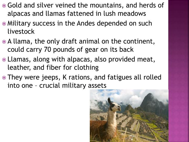 Gold and silver veined the mountains, and herds of alpacas and llamas fattened in lush meadows