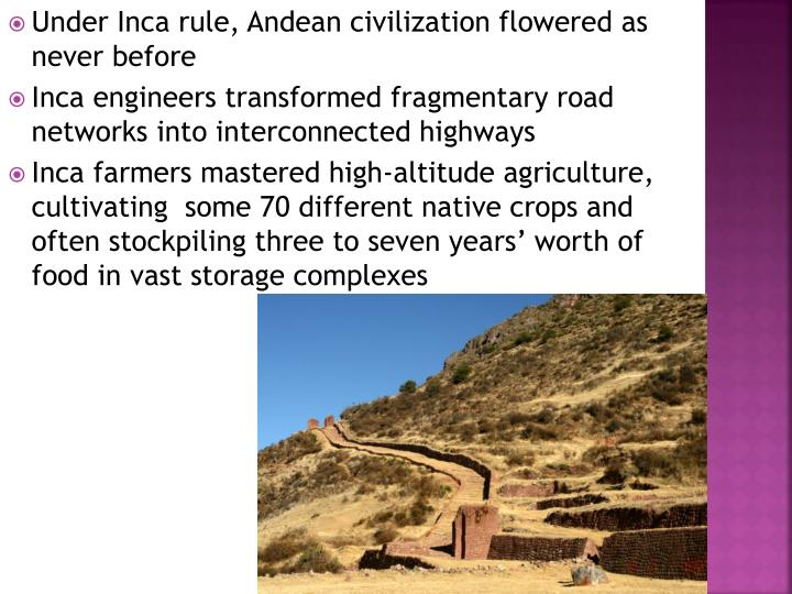 Under Inca rule, Andean civilization flowered as never before