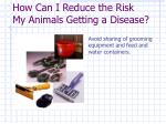 how can i reduce the risk my animals getting a disease4