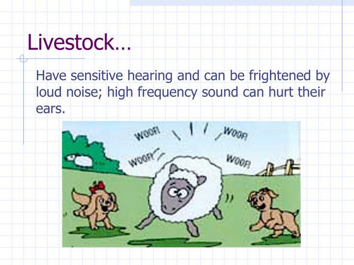 Livestock…