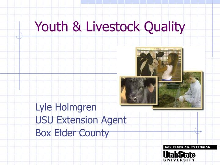 Youth livestock quality