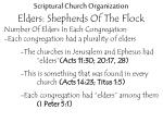 scriptural church organization elders shepherds of the flock7