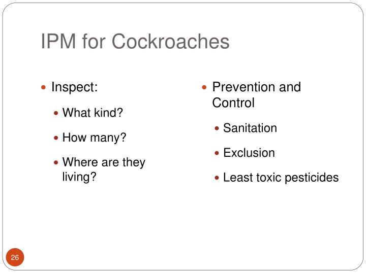 IPM for Cockroaches