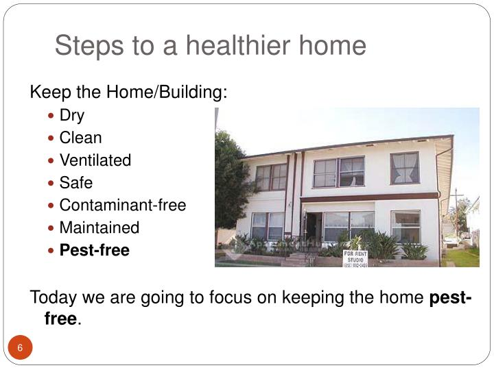 Steps to a healthier home