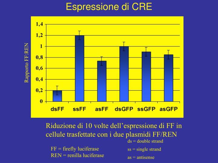 Espressione di CRE