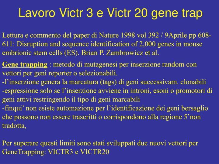 Lavoro Victr 3 e Victr 20 gene trap