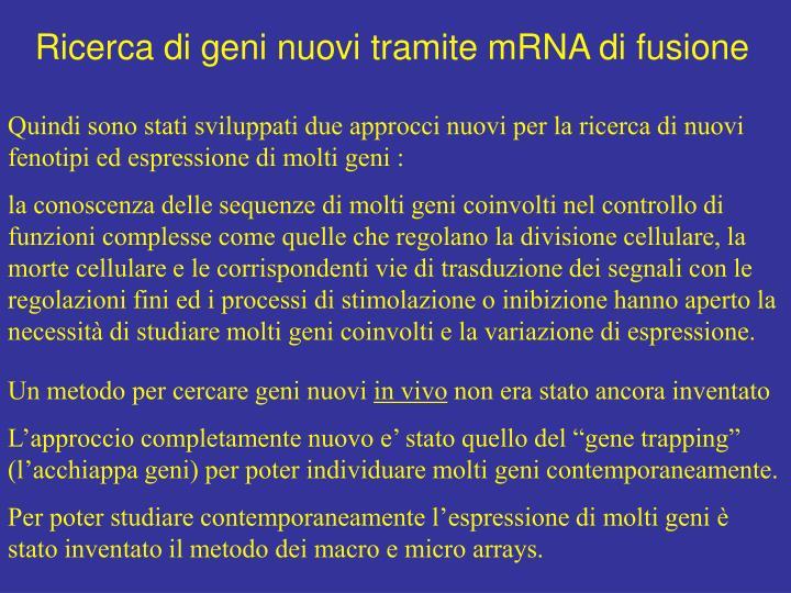 Ricerca di geni nuovi tramite mRNA di fusione