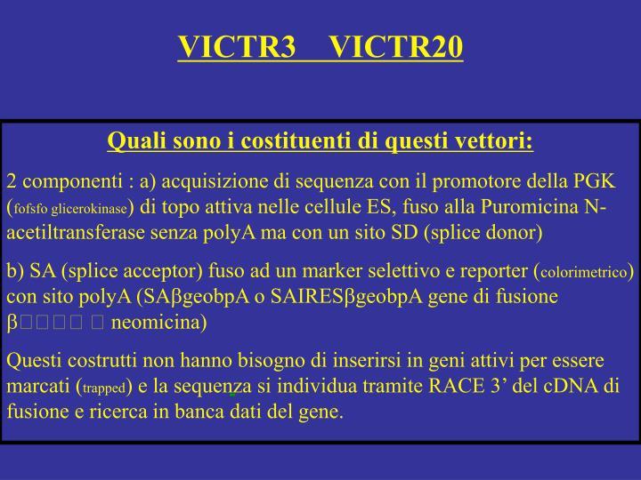 VICTR3    VICTR20
