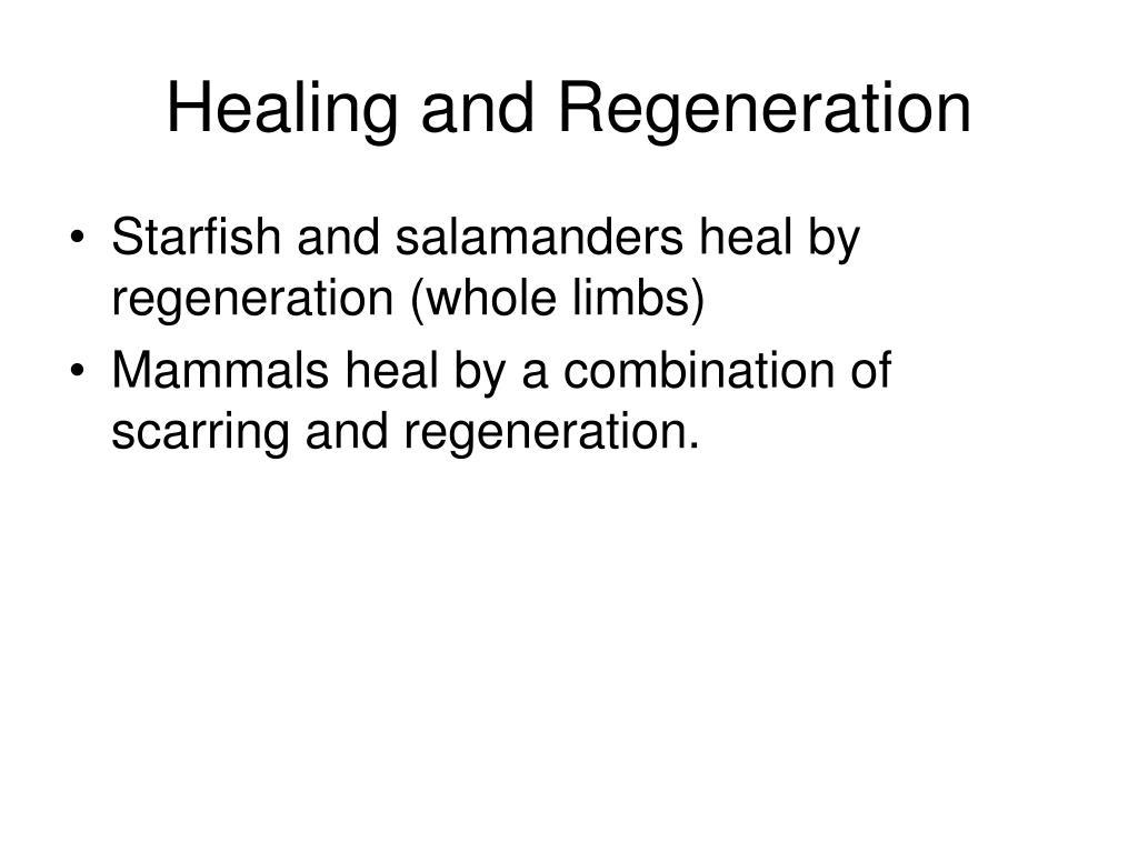 Healing and Regeneration