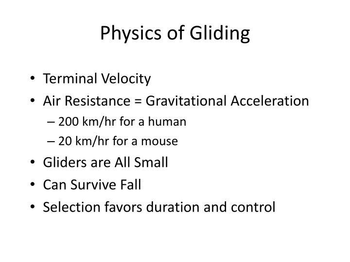 Physics of Gliding