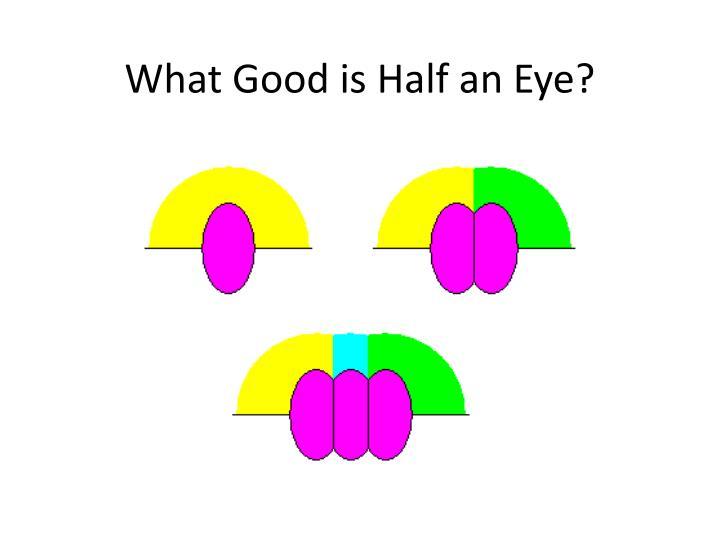 What Good is Half an Eye?