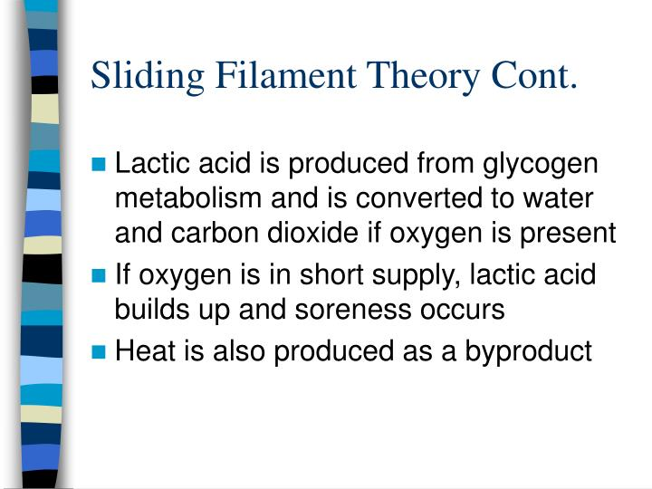 Sliding filament theory cont