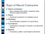 types of muscle contraction2