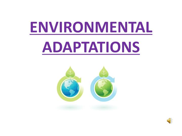 Environmental adaptations