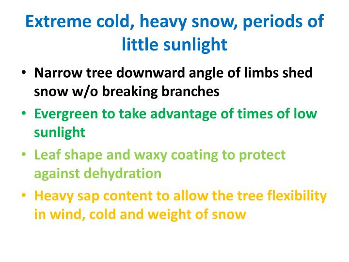Extreme cold, heavy snow, periods of little sunlight